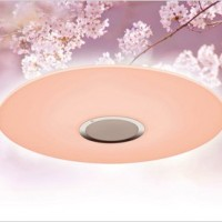 Sakura-Colored LED Light